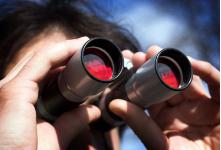 Surveillance & investigation